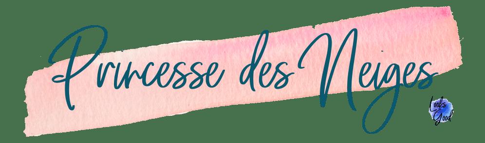 princesse-des-neiges.png